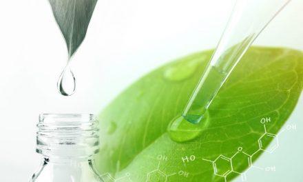 Witaminy, minerały i inne składniki na zdrowe stawy; korzyści przeciwzapalne